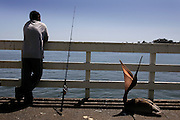 A fisherman and pelican wait for the catch on the pier at the Santa Cruz Boardwalk.  July 26, 2008.