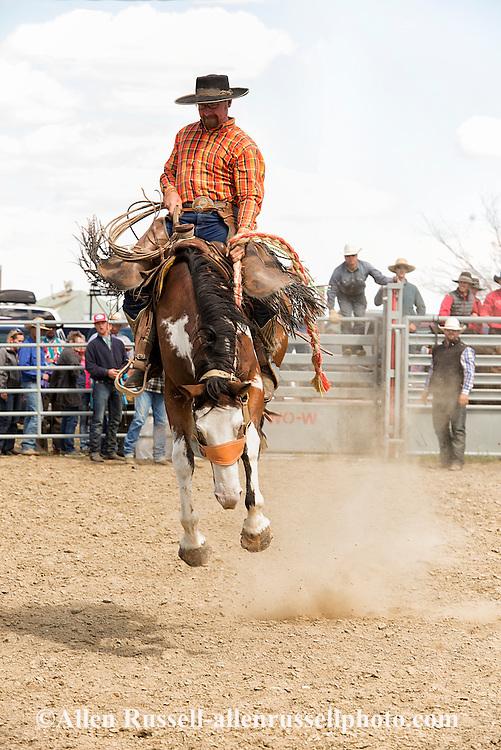 Ingomar Ranch Rodeo, Bronc Riding, Ingomar, Montana