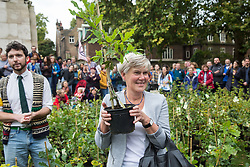 London, UK. 8 October, 2019. Kate Green, Labour MP for Stretford and Urmston, receives a tree from Extinction Rebellion climate activists in Old Palace Yard on the second day of International Rebellion protests. Activists created a fledgling forest of potted native trees outside Parliament as part of an initiative named Reforest Earth and they were then presented to MPs to call on the government to plant billions of trees across the UK and support the planting of trillions more around the world.