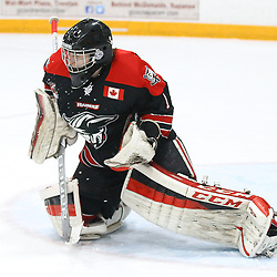 """TRENTON, ON  - MAY 5,  2017: Canadian Junior Hockey League, Central Canadian Jr. """"A"""" Championship. The Dudley Hewitt Cup Game 7 between Georgetown Raiders and the Powassan Voodoos.   Josh Astorino #1 of the Georgetown Raiders makes the stop during the first period<br /> (Photo by Alex D'Addese / OJHL Images)"""
