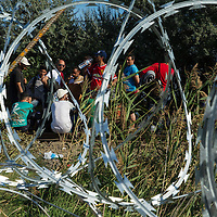 Refugees at the frontier seen through the razor wire of the new Hungarian border fence, which is not yet sealed. Refugees continue to arrive in large numbers, crossing the border from Serbia into Hungary along an old railway line, at a gap in the new border fence. The situation at the 'collection point' close to this point on the frontier is beginning to imporve with UNHCR helping volunteers to create a more organised and sanitary situation. There is some degree of fear amongst the refugees, as well as frustration about long waits, although this sitaution has improved since previous days. There is also concern about fingerprint by Hungarian authorities, leading some refugees to return to Serbia,  and a number wait on that side of the border for nightfall in the hope of then passing through. The refugees here, are exactly on the border, where many pause to take stock of the situation