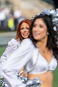 December 8, 2019; Oakland, CA, USA; Oakland Raiders Raiderettes cheerleaders perform during the first half against the Tennessee Titans at Oakland-Alameda Coliseum. (Neville E Guard/Image of Sport)