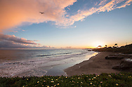 """Its Beach"" at sunset, Santa Cruz, California"