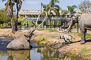 Lake Pit Walk Exhibition