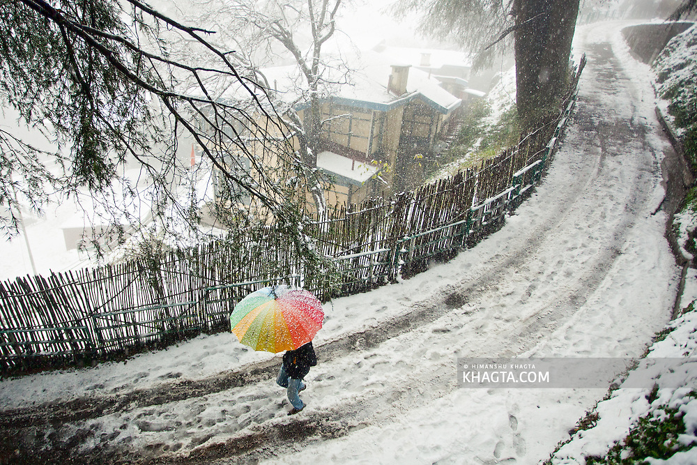 A man walks with a colorful umbrella, in Jakhu, Shimla, during the first snowfall of the season.