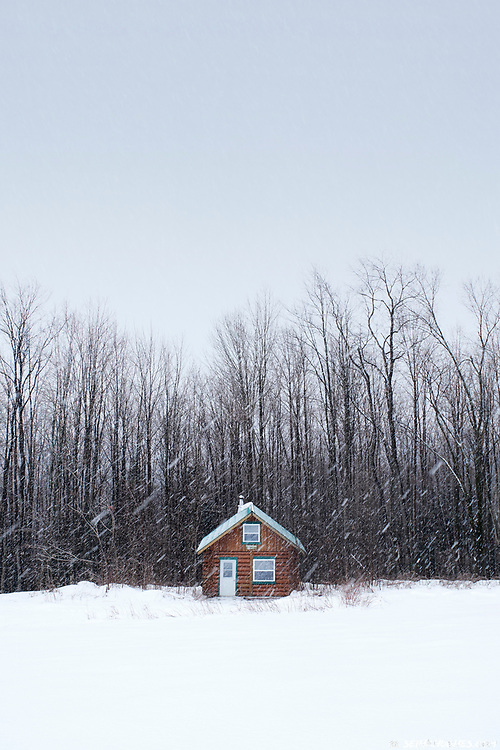 A remote, winter cabin and forest during heavy snowfall in Quebec, Canada.