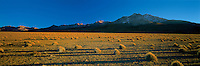 Panoramic view from Surire Salt flat, Altiplano, Andes, Chile Image by Andres Morya