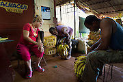 Organoponico workers take inventory of the bananas at the Vivero Alamar organoponico in the Alamar municipality of Havana, Cuba. Organoponicos are publically-run urban organic gardens in Cuba aimed at addressing the country's food supply shortages.  (David Albers/Staff)