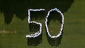 Montessori grup 50 anys