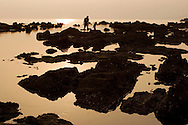 Tidepools at Shonan Beach near Kamakura, Japan.  Crawling around volcanic rocks, examining ocean life within the tidepools is a favorite activity among Japanese families -  teaching the kids about nature.  In such an idyllic scene it is hard to believe that Tokyo is only minutes away.
