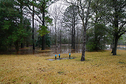 Flooded TerrestriAl Area