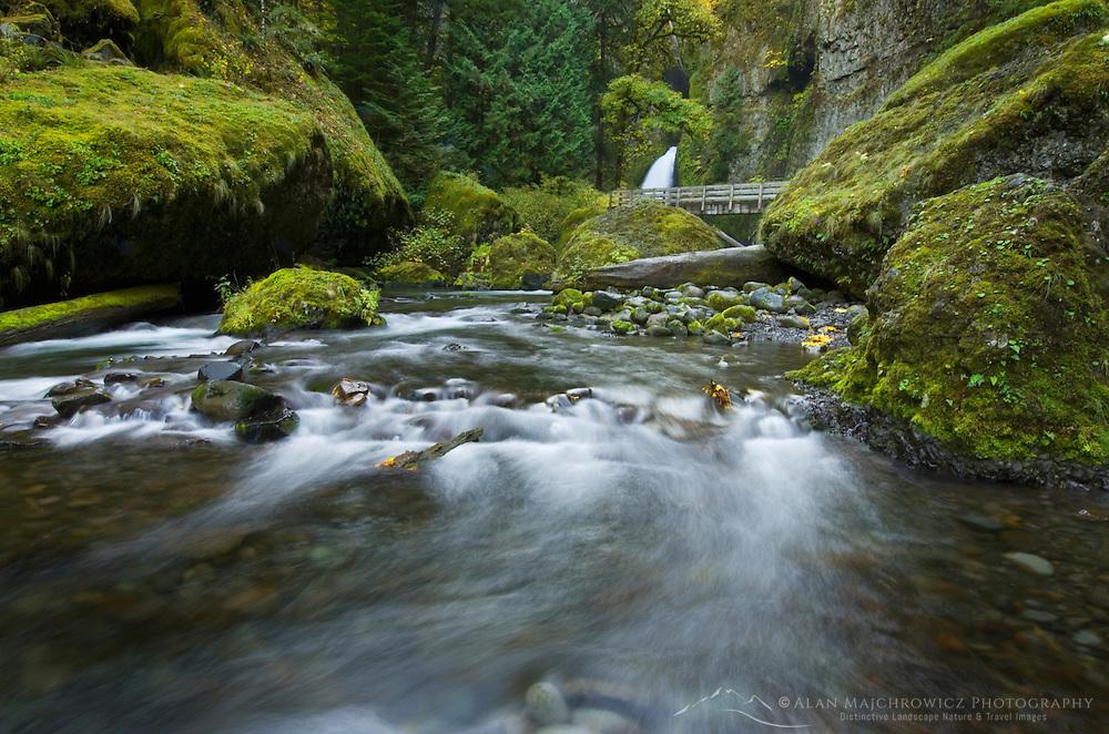 Wachlella Falls and Tanner Creek, Columbia River Gorge National Scenic Area Oregon