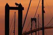 Pilings, masts, gulls and bridges are part of what makes Newport, RI what it is