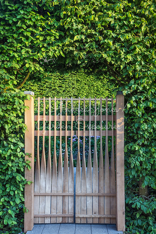 Sculptural bent wood gateway in hornbeam hedge<br /> <br /> The Linklaters Garden for Maggie&rsquo;s <br /> <br /> Designed by<br /> Darren Hawkes<br /> <br /> Built by<br /> Bowles &amp; Wyer<br /> <br /> Sponsored by<br /> Linklaters