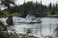 The ferry to Stonington at the Acadia National Park dock at Duck Harbor, Isle au Haut.