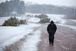 © Licensed to London News Pictures. 04/04/2012. Clent, Worcsestershire, UK. Snow covers the Clent Hills in Worcestershire. Pictured, walkers struggle to climb the Clent Hills as the snowy weather and high winds make it difficult to reach the summit. Photo credit : Dave Warren/LNP