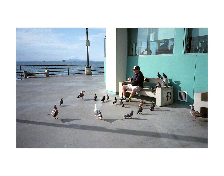 Man with the birds on the Huntington Beach Pier.