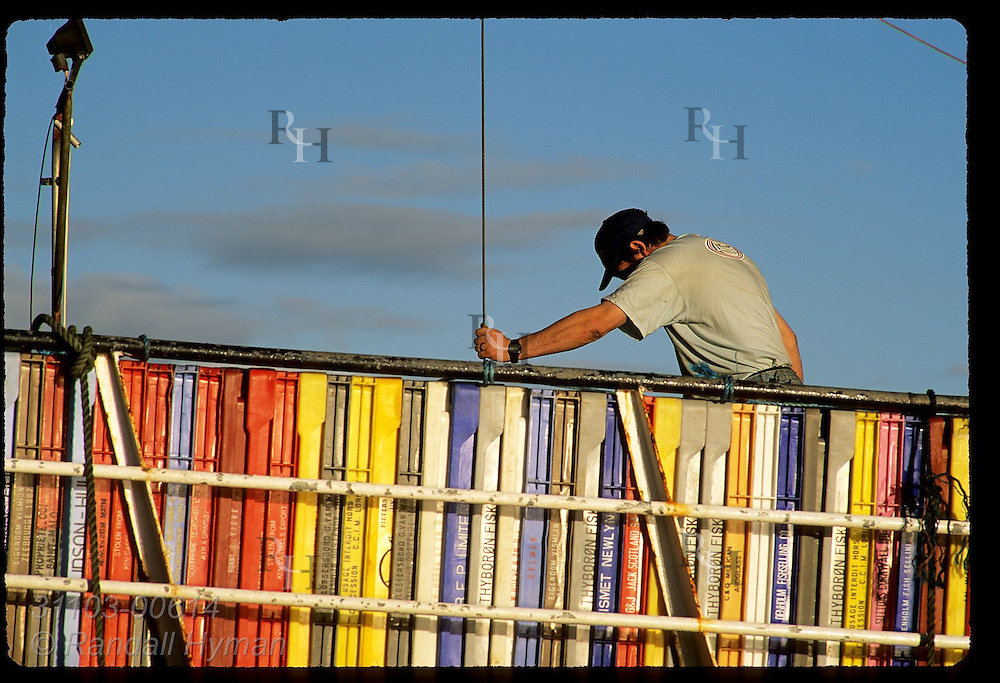 Deck hand guides crane cable into hold of boat behind colorful stack of plastic fish crates; Dingle, Ireland.