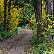 Dirt road in fall. Charlevoix, Quebec.