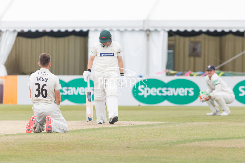 Matt Taylor on his knees during the Specsavers County Champ Div 2 match between Gloucestershire County Cricket Club and Leicestershire County Cricket Club at the Cheltenham College Ground, Cheltenham, United Kingdom on 18 July 2019.