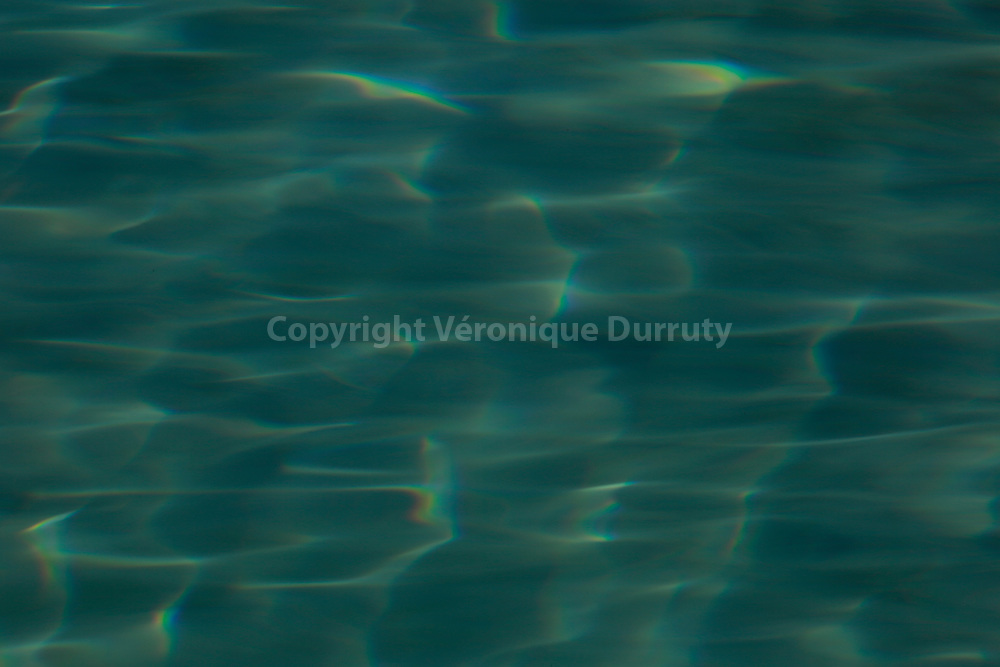 Detail de la piscine de l'Hotel Dar Ahlam, oasis de Skoura, Sud Maroc // Swimming pool of Dar Ahlam Hotel, Skoura oasis, Southern Morocco