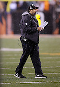 Pittsburgh Steelers offensive coordinator Todd Haley calls out from the sideline while holding his play chart during the NFL AFC Wild Card playoff football game against the Cincinnati Bengals on Saturday, Jan. 9, 2016 in Cincinnati. The Steelers won the game 18-16. (©Paul Anthony Spinelli)