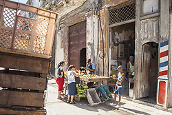 November 23, 2016 - Havana, Cuba - A street seller of fruits and vegetables in Habana Vieja (Old Havana) in Havana, Cuba, on 23 November 2016. (Credit Image: © Alvaro Fuente/NurPhoto via ZUMA Press)