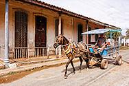 Horse and wagon in Rodas, Cienfuegos Province, Cuba.