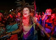 2017 Lollapalooza Fans