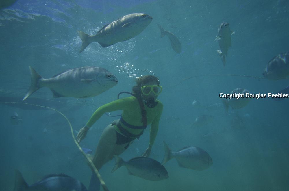 Snorkeling, Hanauma Bay, Oahu, Hawaii<br />