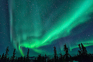 Aurora Borealis at Chena Hot Springs,Fairbanks,Alaska,USA