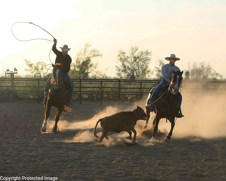 Tucson calf-roping at sunset