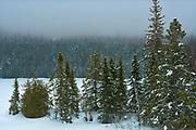 Snow falling on Fenton Lake<br />Lake Superior Provincial Park<br />Ontario<br />Canada