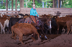 September 23, 2017 - Minshall Farm Cutting 5, held at Minshall Farms, Hillsburgh Ontario. The event was put on by the Ontario Cutting Horse Association. Riding in the $35,000 Non-Pro Class is Laurie Reed on Smooth Alley Cat owned by the rider.