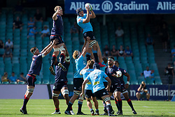 March 17, 2018 - Sydney, NSW, U.S. - SYDNEY, NSW - MARCH 18: Waratah win a line out during round 5 of the Super Rugby between Waratahs and Rebels at Allianz Stadium in Sydney on March 18, 2018. (Photo by Speed Media/Icon Sportswire) (Credit Image: © Speed Media/Icon SMI via ZUMA Press)