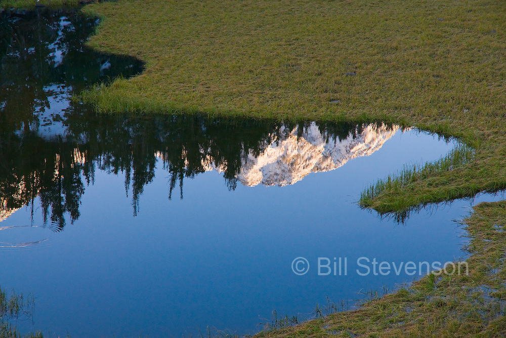 A photo of a reflection of Mount Morgan in an alpine lake in the High Sierra of California.