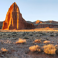 Sunrise sidelights the Temple of the Sun and some ground shrubs, painting the Cathedral Valley in beautiful light! Capitol Reef National Park, Utah