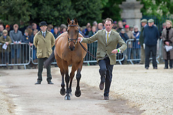 Murphy Joseph, (IRL), Sportsfield Othello<br /> First Horse Inspection - Mitsubishi Motors Badminton Horse Trials <br /> Badminton 2015