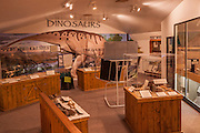 Old Trail Museum, Dinosaur Exhibit