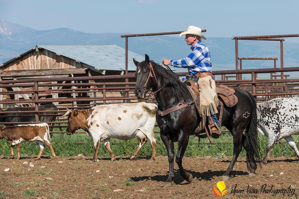 Karl Tyler Ranch, Lemhi County, Idaho.