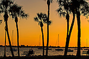 Sunset from Bayfront Park Sarasota, Florida