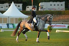 Stallion Show