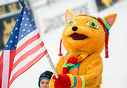 Mascot Golden Fox with US flag during  the 6th Ladies'  Slalom at 53rd Golden Fox - Maribor of Audi FIS Ski World Cup 2016/17, on January 8, 2017 in Pohorje, Maribor, Slovenia. Photo by Vid Ponikvar / Sportida