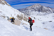 Backcountry skier checking snow conditions under Mount Abbott, Inyo National Forest, Sierra Nevada Mountains, California