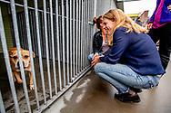 VLAARDINGEN - Minister Carola Schouten (LNV) ging ter gelegenheid van Dierendag donderdag 4 oktober op bezoek bij de Dierenbescherming in Vlaardingen Directeur Co'tje Admiraal van de Dierenbescherming verzorgde  met haar mensen een rondleiding door het asiel en geeft een kijkje achter de schermen van het ambulancewerk. Ook een ontmoeting met Bob Marley staat op het programma. Bob is een hondje dat tot voor kort niet geheel vrijwillig getooid was met een rastakapsel. Na een knip- en scheerbeurt onder verdoving gaat het inmiddels een stuk beter met het verwaarloosde hondje.  Bob is een hondje dat tot voor kort niet geheel vrijwillig getooid was met een rastakapsel. Na een knip- en scheerbeurt onder verdoving gaat het inmiddels een stuk beter met het verwaarloosde hondje.  ROBIN UTRECHT