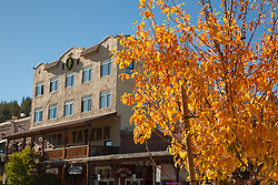 """Downtown Truckee in the Fall 3"" - Photograph of the Sierra Tavern and other businesses in Downtown Truckee in the fall with the yellow leaves of a tree in the foreground."