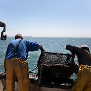 Lobster fishing in Christchurch Bay, Dorset. UK