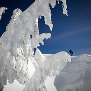 Owen Dudley skins up the arm in the backcountry near Mount Baker Ski Area.