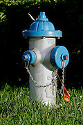 US-ORLANDO- Fire Hydrant. PHOTO: GERRIT DE HEUS.VS - ORLANDO - Een brandkraan langs de openbare weg. PHOTO  GERRIT DE HEUS