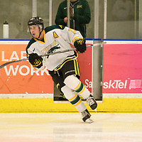 2nd year forward Tristan Frei (13) of the Regina Cougars in action during the Men's Hockey home game on February 3 at Co-operators arena. Credit: Arthur Ward/Arthur Images